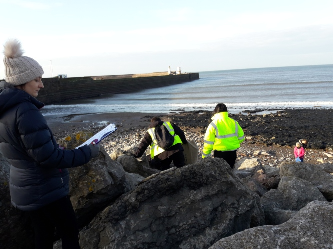 Surveying litter and beach cleaning at Whitehaven North Shore